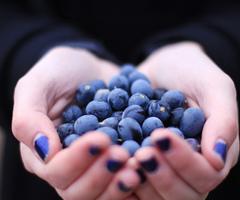Τροφές αντιγήρανσης για νεανικό και λαμπερό δέρμα!