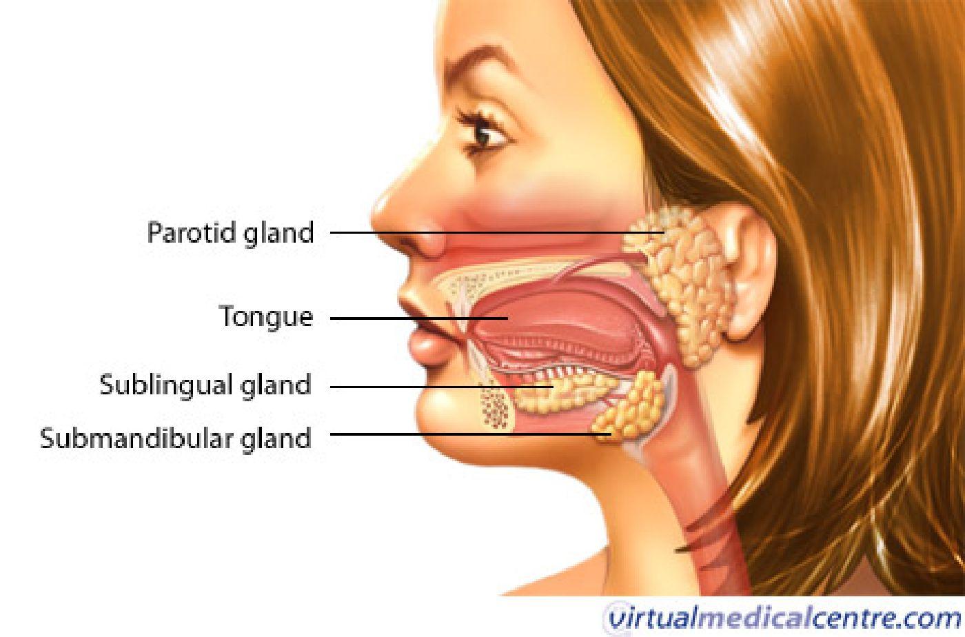 Sexiest woman swollen facial gland aboriginal girl